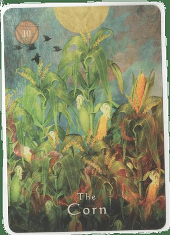 the-corn-shaman